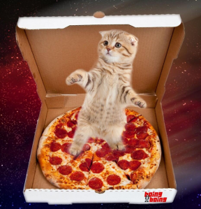 space cats3